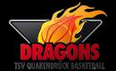 Logo des TSV Quakenbrück Dragons